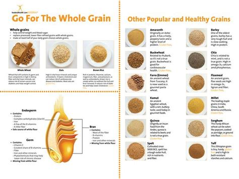 whole grains for 12 month custom whole grain banner 48 quot x 36 quot add your logo to
