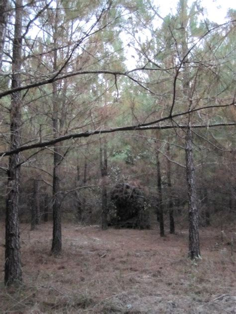 Cheap Ground Blinds cheap ground blind options