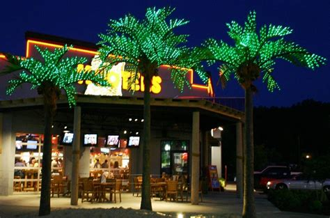 Tiki Bars For Sale palm trees light up palm trees tropical flowers bird of