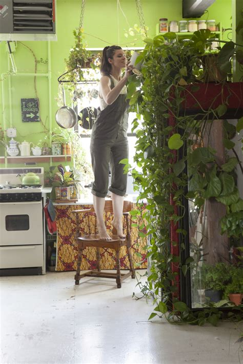plants for apartments meet a who keeps 500 plants in