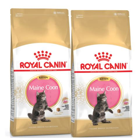 Cat Food Royal Canin Kitten 36 1kg royal canin breed nutrition maine coon 36 kitten food from