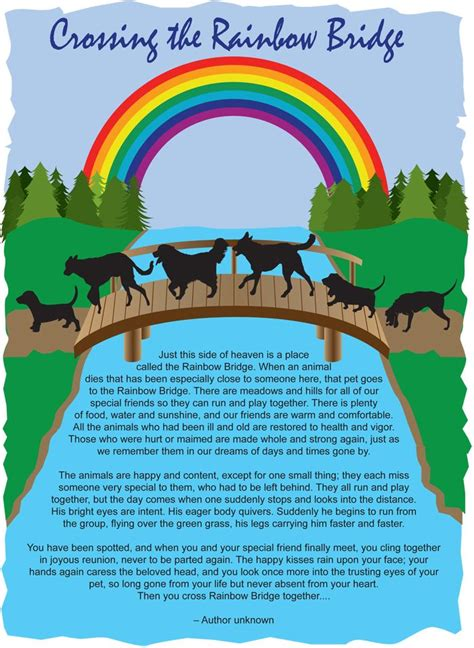 rainbow bridge poem for dogs best 25 rainbow bridge poem ideas on rainbow bridge rainbow bridge