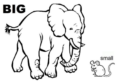 opposites coloring pages for toddlers opposites activity sheets for color on pages