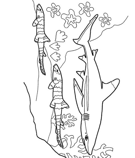 shark boy coloring pages az coloring pages