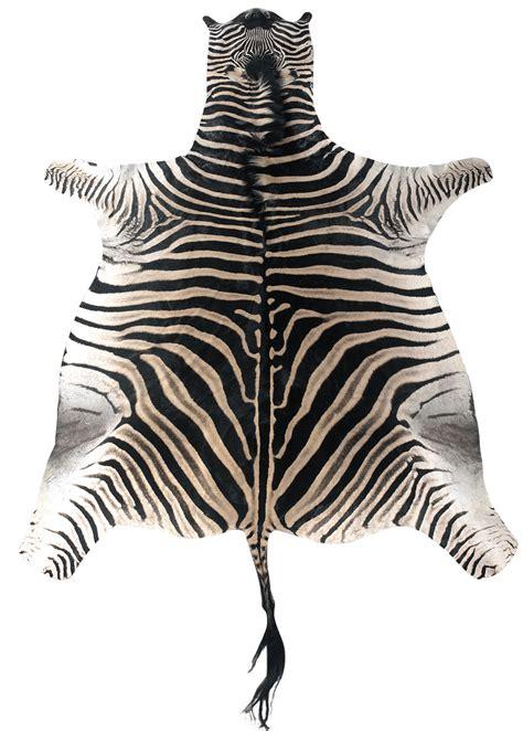 sebra teppich zebra teppich deutsche dekor 2017 kaufen