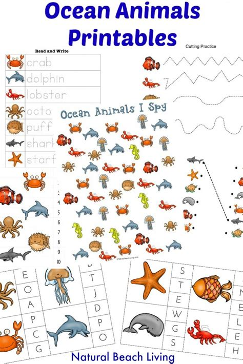 best photos of ocean animals worksheets cut out ocean the best ocean animals preschool activities and printables