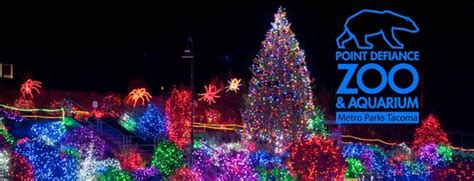 The Seattle Lesbian S Top 10 Guide To Holiday Shenanigans Zoo Lights Baltimore
