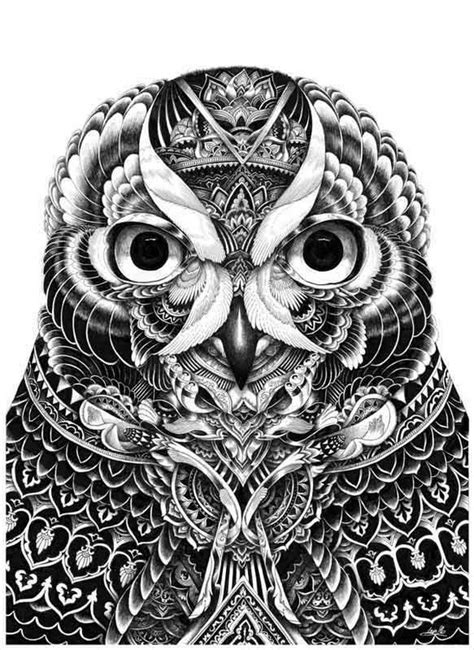 owl part 5 by iain macarthur drawing inspiration