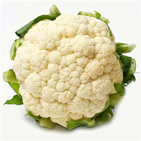 buy fresh cauliflower from s m s exports and imports