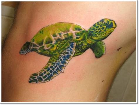 best turtle tattoo designs 35 stunning turtle tattoos and why they endure the test of