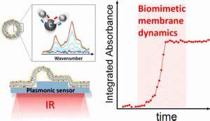 Plasmonic Antenna Thesis by Magnetoplasmonics Lab Shahid Beheshti