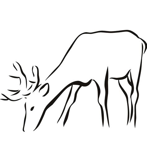 Outline Drawings Of Animals by Deer Outline Clipart Best
