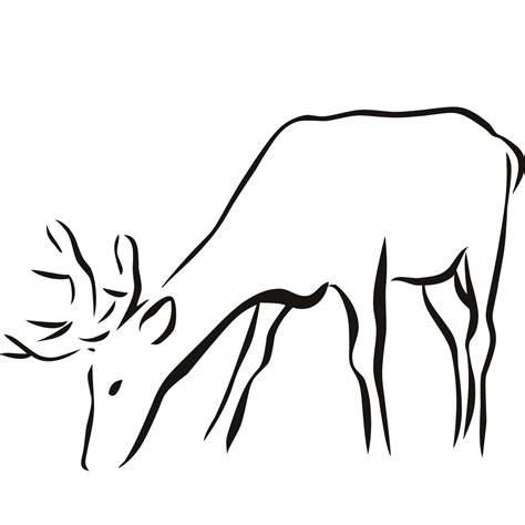 printable animal line drawings deer outline clipart best