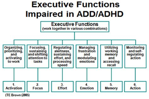 brown add scales report template executive function middlebury center for reading adhd