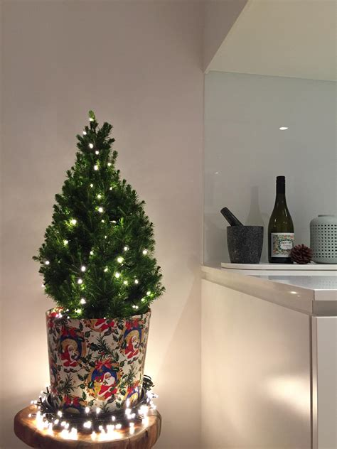 apartment sized christmas tree christmas