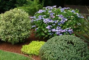 Top 2016 types of shrubs and bushes landscape design ideas photos and