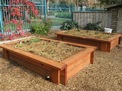 wicking garden bed with a potential worsening of drought conditions this