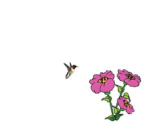blooming flower flower blooming animation clipart best