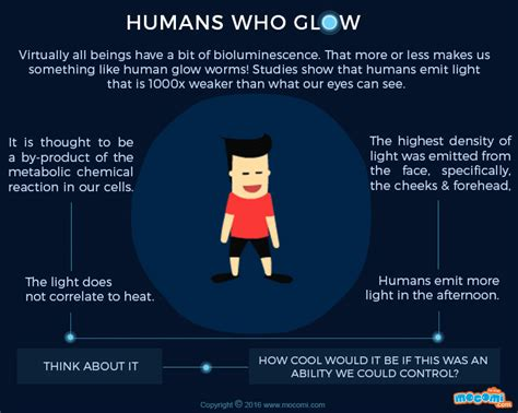 How Do Lightning Bugs Light Up Human Bioluminescence Facts Gifographic For Kids Mocomi
