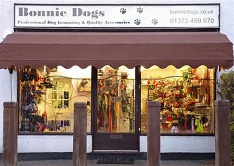 dogs accessories shopping bonnie dogs in leatherhead surrey groomers