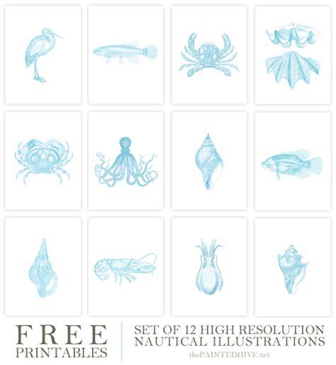 free printable nautical wall art free printable vintage coastal illustrations the painted