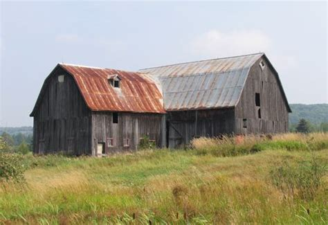 Roofing Materials For Sheds by Building A Shed Metal Roofing