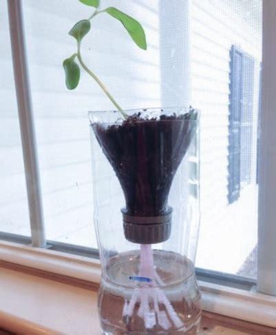 membuat tempat hidroponik cara membuat tanaman hidroponik sederhana bibitbunga com