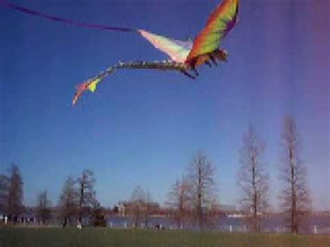 go fly a kite 3d dragon kite must see!!! youtube
