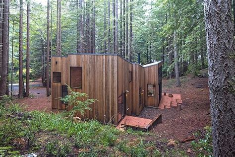 Shed Roof House redwood forest cabin offers beautiful solitude immersion