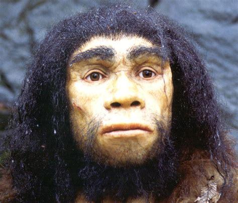 the last human a guide to twenty two species of extinct humans ebook предки неандертальцев и кроманьонцев антропогенез ру