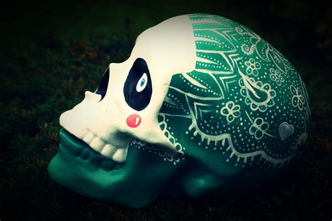 Handmade Skull - this is the skull appreciation society welcome to a