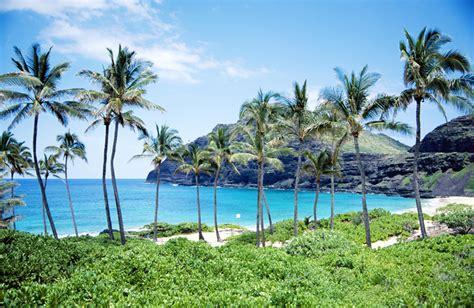 free live chat room for website rapnacional amazing top world pic hawaii beach