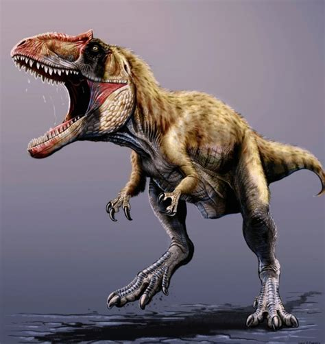 Contact Shader Utuh new fossil shows the dinosaur that once kept tyrannosaurs