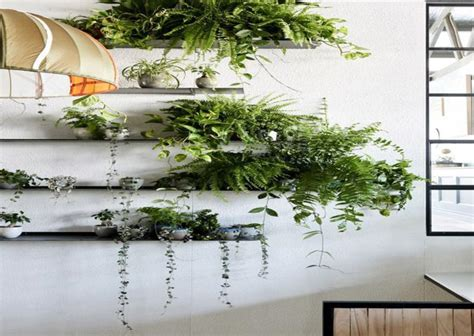 Agradable Iluminacion Para Plantas #4: Estantes-pared-plantas-deco.jpg