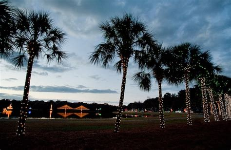 festival of lights charleston christmas light displays you won t want to miss