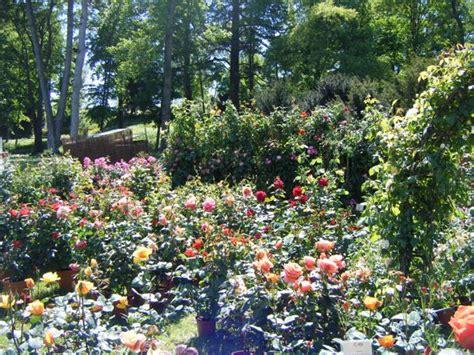 tre giorni per il giardino fai tre giorni per il giardino