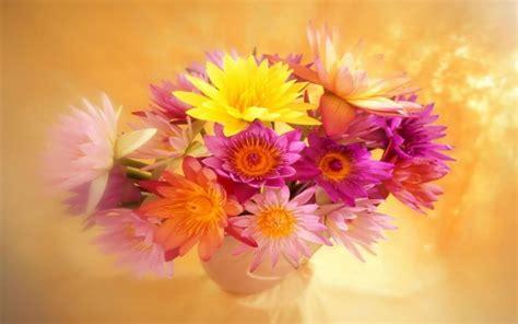 ci fiori fiori wallpaperart part 2