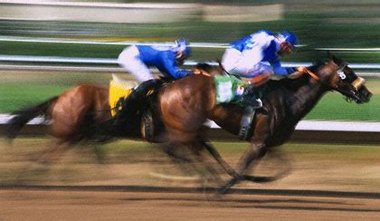 Win Money Horse Racing - online sport betting learn how to win with online sports betting