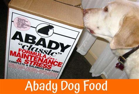 abady food the best guide of abady food in 2017 us bones