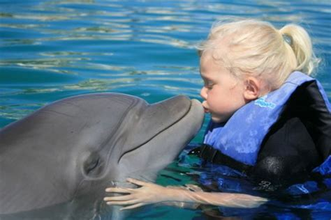 Dolphin Encounters For Kids And Families Us Mexico