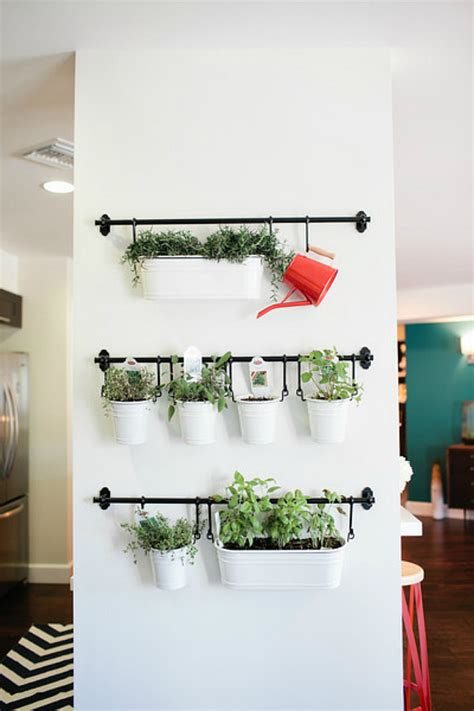 Hanging Herbs In Kitchen Window by 15 Phenomenal Indoor Herb Gardens