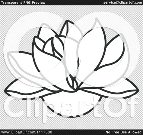 Lotus Black And White Outline by White Lotus Outline Www Pixshark Images Galleries With A Bite