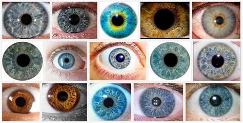 iris color change what is iris color chart iriscope iridology