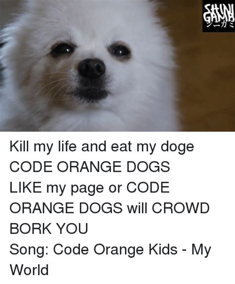 Orange Dog Meme - リ ine kill my life and eat my dogecode orange dogs like my