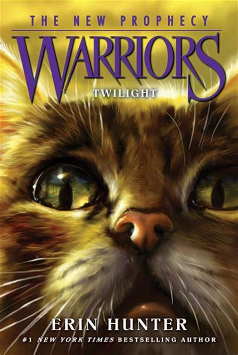 the clan gillean classic reprint books 17 best images about warrior cat books on cats