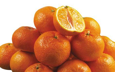 new year 2016 mandarin oranges 7 wonderful hd mandarin oranges wallpapers hdwallsource