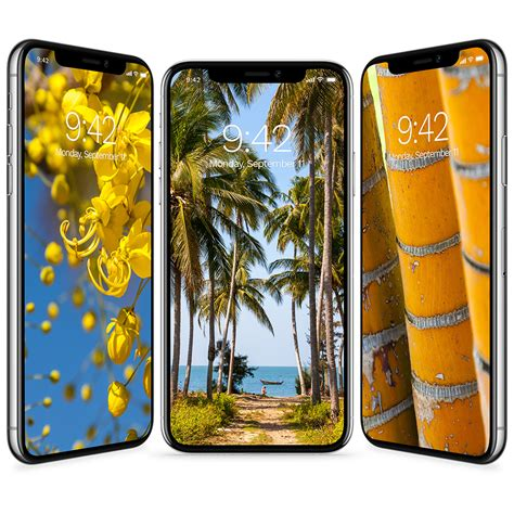 Tropic Iphone free tropical wallpapers for iphone x and iphone 8 and