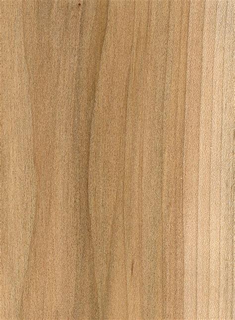 red maple the wood database lumber identification