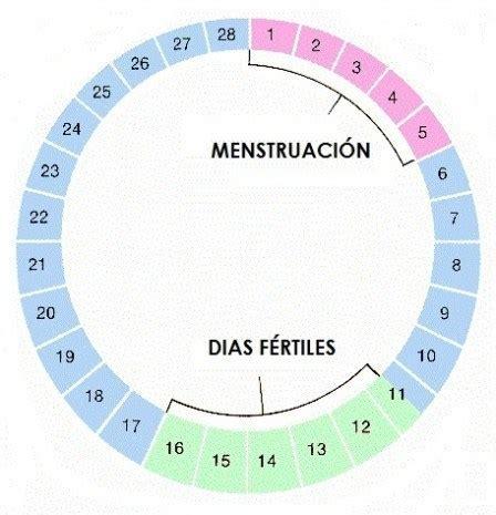 calendario de fertilidad 2016 calendario de fertilidad embarazo10 com
