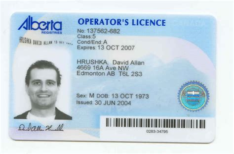 fake driving licence template image search results